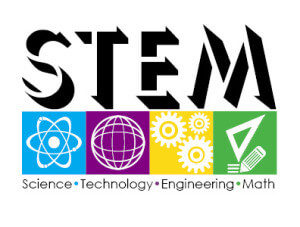 Stem Degree